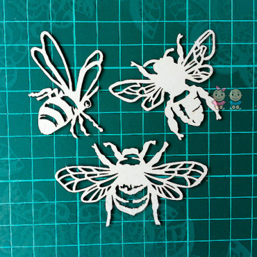 G014, Set 'Insects'